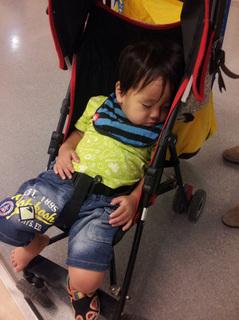 IKEAしゅん眠り.jpg