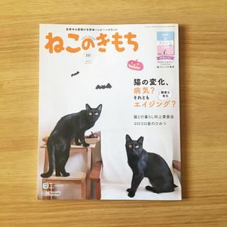 nekonokimothi-01.jpg